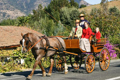 Antique Horse-Drawn Royalty Free Stock Image