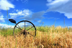 Antique Horse Drawn Plow Stock Image