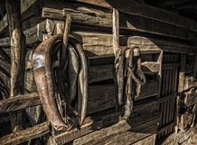 Antique Horse Tack. Hanging in an old wooden horse stable on a historic farm Stock Photo