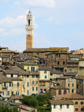 Antique houses and Mangia tower. Siena, Italy Stock Photo