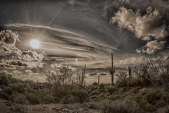 Antique image of the desert Royalty Free Stock Images