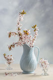 Antique Jug With Blossom Royalty Free Stock Image