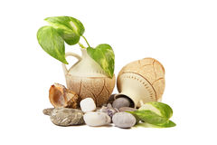 Antique jugs, stones and cockleshell Stock Image
