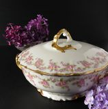 Limoges China. Antique Limoges Bridal Wreath covered serving bowl royalty free stock image