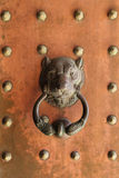 Antique Lion's Head Door Knocker Stock Images