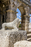 Antique lion statue in Pula Royalty Free Stock Image