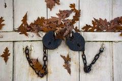 Antique locks close the cellar door Stock Photo