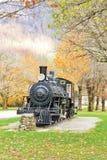 Antique Locomotive in Newhalem Washington Royalty Free Stock Photography