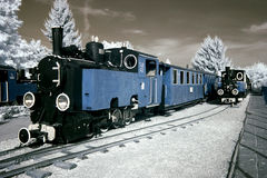 Free Antique Locomotives. Royalty Free Stock Image - 25563186