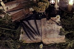 Antique magic book with grunge shabby pages, herbs and black candles. Mystic background with ritual esoteric objects, occult, fortune telling and halloween royalty free stock photo