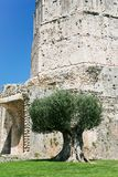 Antique Magne Tower in Nimes Stock Photo