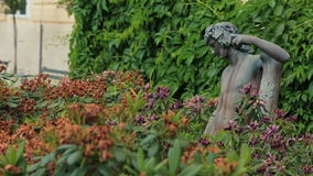 An antique man statue by tree lined alley on the green garden background.  stock footage
