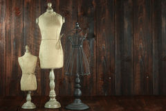 Antique Mannequin Busts on Wood Grunge Background Stock Photos