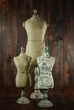Antique Mannequin Busts on Wood Grunge Background Stock Images