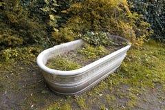 Antique marble bathtub overrun by plants Stock Photos