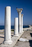 Antique marble columns of Chersonesus in Crimea Stock Images