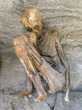 Antique mummies in Alcaya, Bolivia Stock Photos