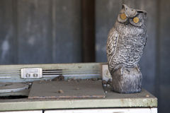 Antique Oven and Owl Royalty Free Stock Photos