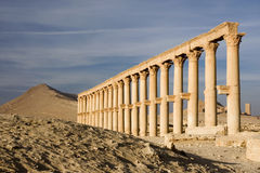 Antique Palmyra in Syrian desert Stock Image