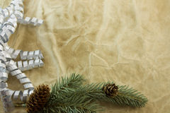 Antique paper Christmas fir branch Royalty Free Stock Images