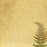 Antique Paper with Fern Impression. Antique paper background enhanced with the impression of a delicate fern Stock Photo