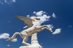 Antique Pegasus sculpture in Boboli Gardens  in Florence, Italy Royalty Free Stock Images