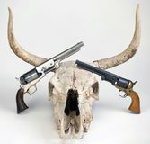 Antique Pistols and Cow Skull. Royalty Free Stock Image