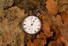 Antique pocket watch on dead leaves. Antique pocket watch on dead winter leaves Stock Photo