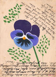 Antique postcard with image of Pansy Royalty Free Stock Image