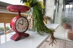 Antique red clock for interior decoration. Antique red clock with fake plant and flower in glass decorated on modern table. Interior design Royalty Free Stock Image