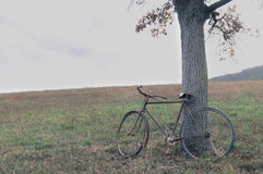 Antique or retro oxidized bicycle outside Stock Images