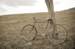Antique or retro oxidized bicycle outside Stock Photos