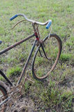 Antique or retro oxidized bicycle outside Stock Photo