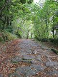 An antique Roman road, The Sacred way,  in the Monte Cavo in a forest near Rome. Italy. Antique Roman road.  The Sacred way. Travel destination Stock Photography