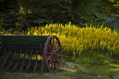 Antique seeder on a lawn. Royalty Free Stock Photography