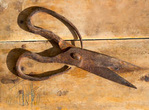 Antique sheep wool shears scissors rusted Royalty Free Stock Photos