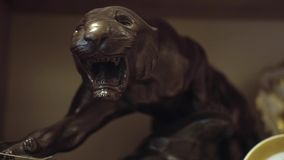 Antique Shop Black Panther Statue. By steady camera stock video