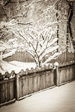 Antique Snowstorm Royalty Free Stock Images