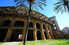 Antique stadium in mallorca and palm Royalty Free Stock Photography