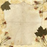 Antique Stationary/Background Royalty Free Stock Photography