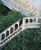 Antique Stone Stairway. Surrounded by lush foliage Royalty Free Stock Photo