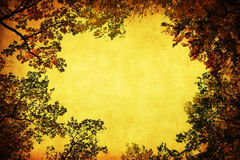 Antique style frame of tree tops royalty free stock photo