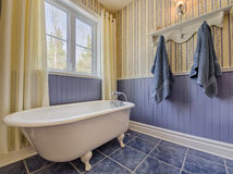 Antique Style Yellow And Blue Bathroom Stock Photography