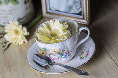 Antique Teacup with yellow daisy flower Royalty Free Stock Photography