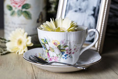 Antique Teacup and Yellow Daisy Flower Stock Photo