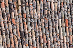 Antique tiles on a roof Stock Photo