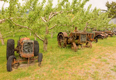 Antique tractors in british columbia Stock Photography