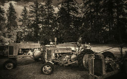 Antique Tractors in a Field Royalty Free Stock Photo