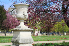 Antique vase adorning the spring blossoming Park. Paris Stock Photos