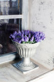 Antique vase Provence interior, ceramic, lavender, blue, gray, purple, beautiful Stock Photography